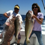 Grouper and Tile fish